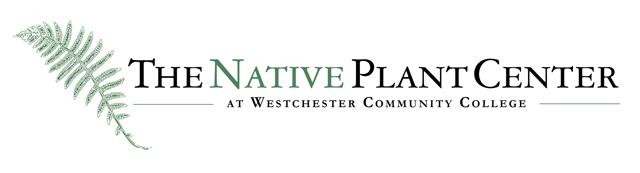 Npc Wcc Logo